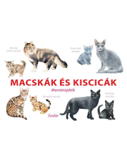 Macskák és kiscicák - Memóriajáték