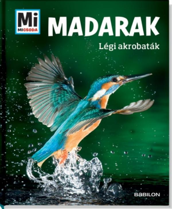 Madarak - Légi akrobaták