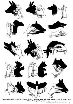 hand-shadows.jpg