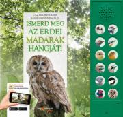 Ismerd meg az erdei madarak hangját!