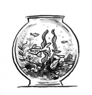 panthera.akvarium.jpg