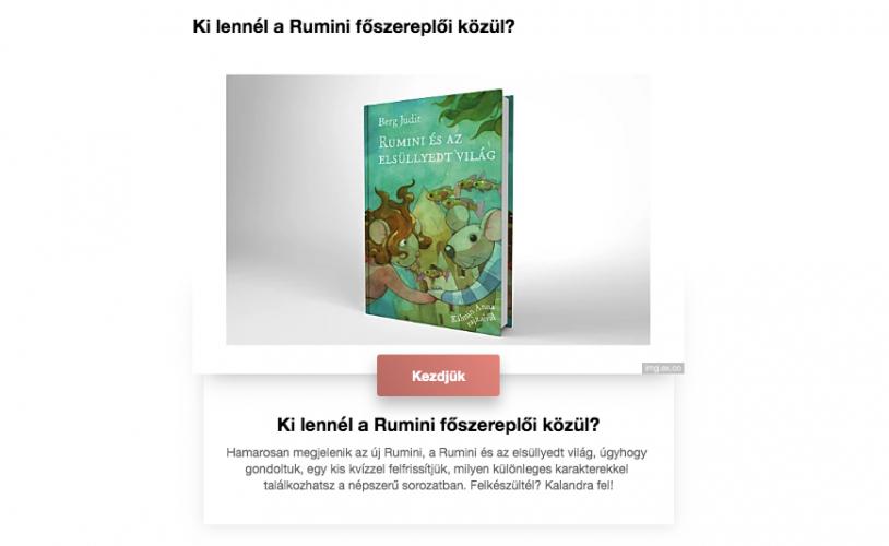 rumini3-1.jpg