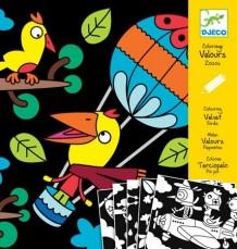 Bársonyszínező - madarak