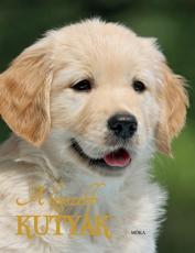 A legszebb kutyák