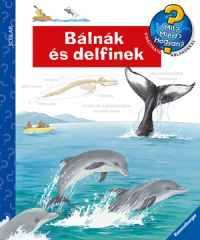 Bálnák és delfinek - Mit? Miért? Hogyan? 37.