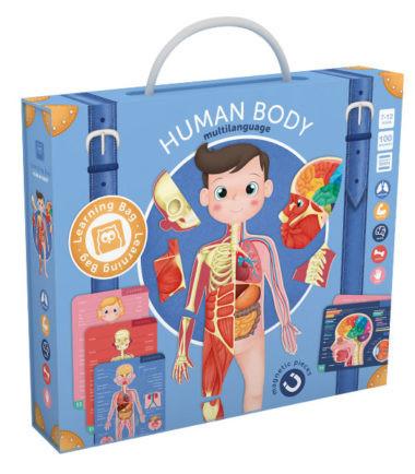 Mágneses játék - Az emberi test
